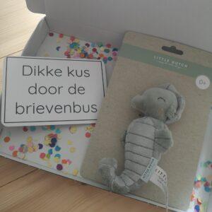 Brievenbuscadeautje Little Dutch zeepaardje mint