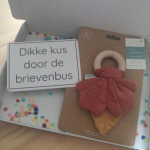 Brievenbuscadeautje Little Dutch regenboogspeeltje met kaartje