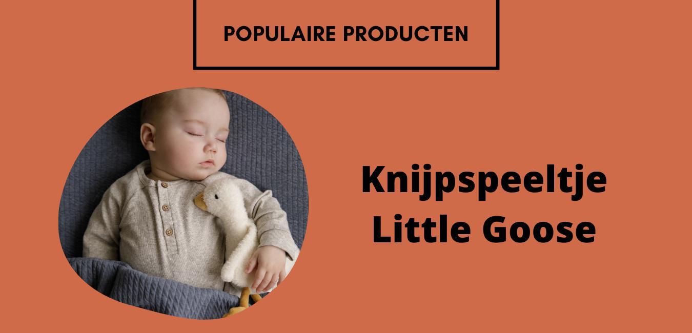 Little dutch populair 2