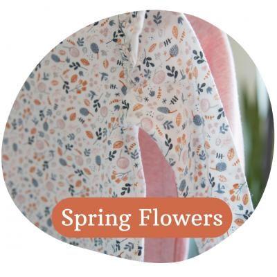 Little dutch-Spring-Flowers